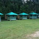 safari tents - with no cars parked at the time