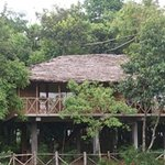 Tree Top bamboo cottage