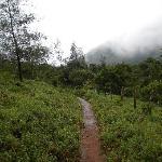 Way to Tadiandamol peak