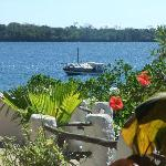 View of Wasini channel from  shimoni reef balcony