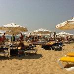 the beach (27712443)