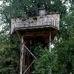 The smaller tree house