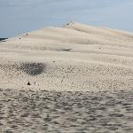 dune di pyla