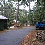 Cabins in the woods 1 (some have jacuzzis!)