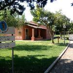 esterno bungalows