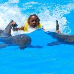 My daughter and dolphin