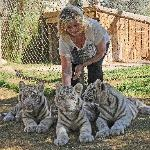 Maggie with Tiger Cubs