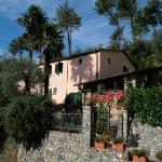 Villa Caterina Foto