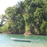 Punta Uva (muy cerca de Miraflores Lodge)