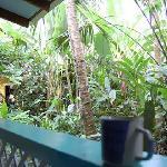 guarana room porch