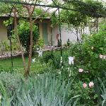 más del jardin