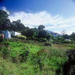 Our extensive grounds in Swellendam