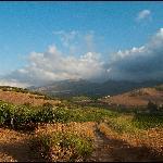 Photo of Agriturismo Tarantola