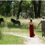 Enjoy our wonderful surroundings - peaceful bushland, yet so close to town