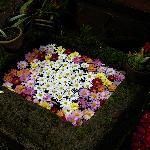 Ruta de las Flores