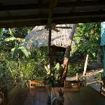 Breakfast area and hammock palapa