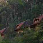 Photo de Vakona Forest Lodge