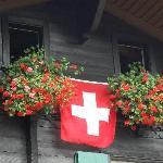 Heidi's house