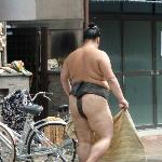 Stop at sumo wrestler's stable