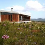 One of the freestanding fynbos suites