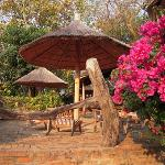 Tropical gardens and rustic luxury