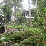 Botanical Garden, Berjaya Hill