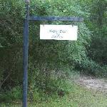Wonderful little trail