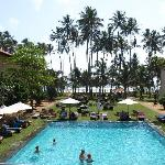 Hotel Pool & Grounds