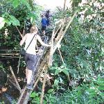 crossing the bamboo bridges