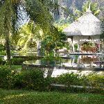 Pool - Les Pavillons