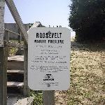 Roosevelt Nature Preserve at Oak Grove Walkway to Beach