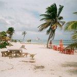 Blue Ocean Safari Foto