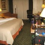 Foto van Holiday Inn Mt. Kisco (Westchester Cty)