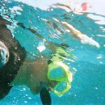 Diver Dan.