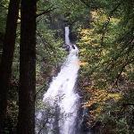 Moss Glenn Falls