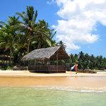 Mirissa Beach - Spiaggia di Mirissa