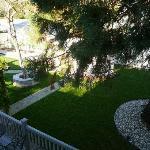 Morning view from Bella Vista window