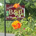 Sign for the B&B and some of Mary's flowers