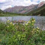 A beaver lodge on the lake at Maroon Bells