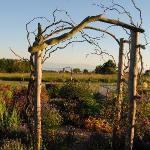 Garden Gate by Lea