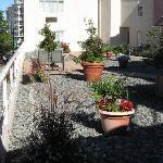 A rooftop garden/patio