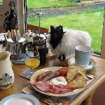 Hearty Irish breakfast