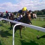 Beverley Racecourse