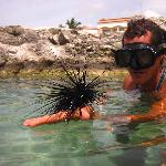 Tour guide on snorkel tour at resort