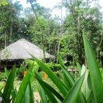 Photo of Waro Waro Lodge