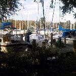 Yachts galore!