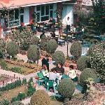 hotel building with garden