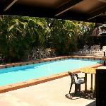 looking across the pool