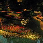 The Sunken Garden at night