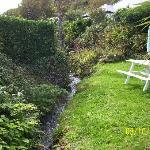 Garden and Stream!